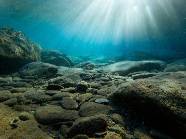Amazing Deep Sea World